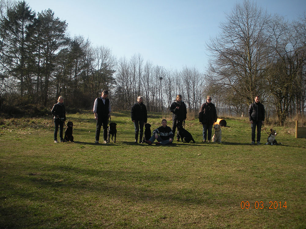 Hundetraening-Charlottenlund_videre2