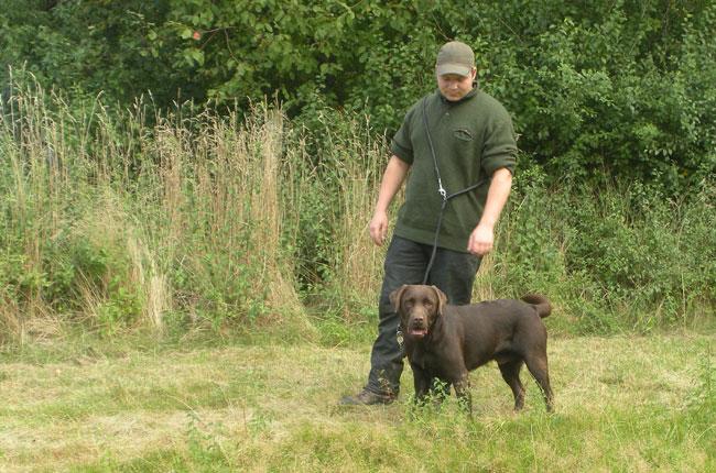 Hundedamen-2012--jagt-billeder-072