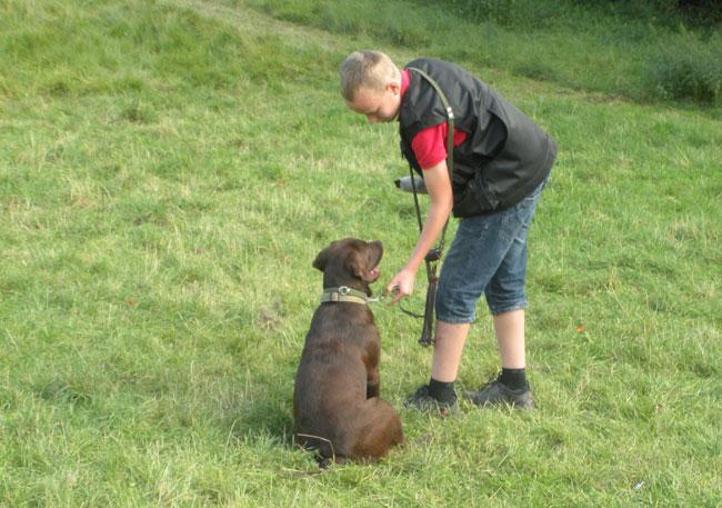 Hundedamen-2012--jagt-billeder-075
