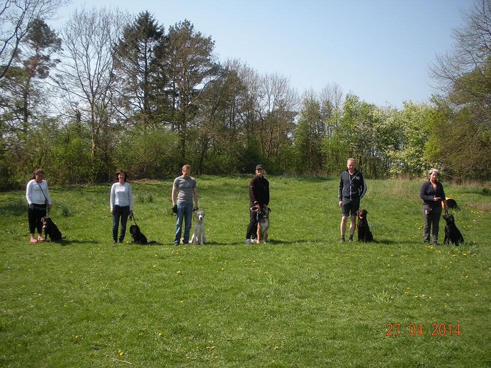 Hundetraening-Charlottenlund_videre